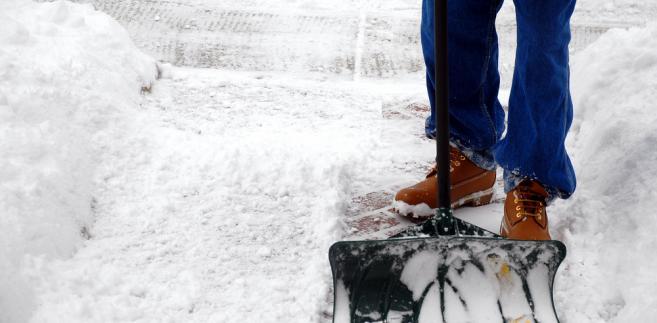 Strażnicy miejscy, którzy stwierdzą niedopełnienie obowiązków związanych z oczyszczaniem chodników mogą nałożyć mandat w wysokości 100 zł