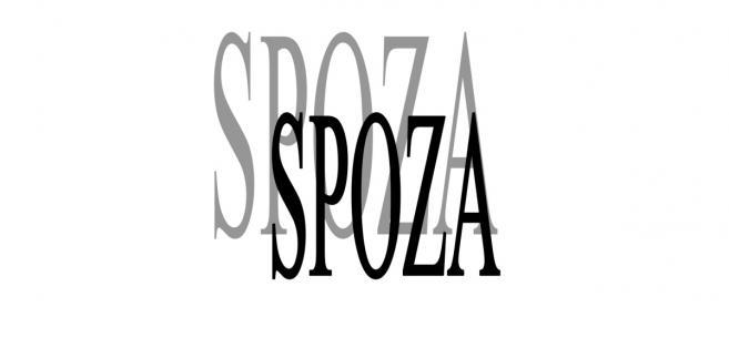 Stowarzyszenie SPOZA - pozarządowa agencja zatrudnienia