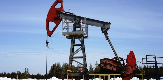 Baryłka ropy West Texas Intermediate w dostawach na luty na giełdzie paliw NYMEX w Nowym Jorku jest wyceniana po 53,08 USD, po zwyżce o 7 centów.