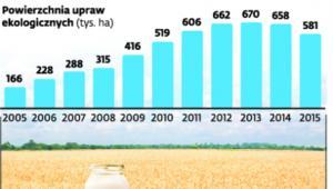 Mniej ekologicznych producentów żywności