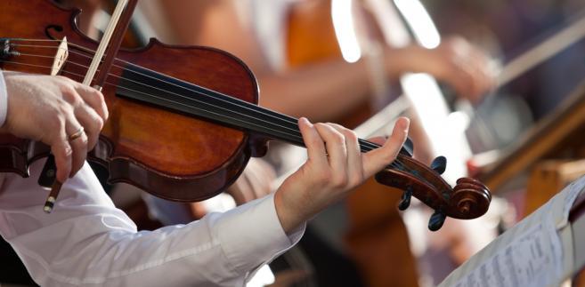skrzypce, muzyka, koncert