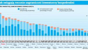 Jaki zysk osiągają rocznie zagraniczni inwestorzy bezpośredni
