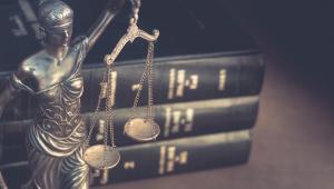 Ustawa egzekucyjna w art. 2 par. 1 pkt 11 wyraźnie też stwierdza, że egzekucji administracyjnej podlegają obowiązki z zakresu bezpieczeństwa i higieny pracy oraz wypłaty należnego wynagrodzenia za pracę, a także innego świadczenia przysługującego pracownikowi, nakładane decyzją organów Państwowej Inspekcji Pracy.