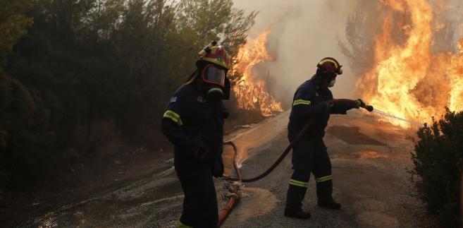 Pożary w Grecji. Sytuacja jest coraz bardziej poważna