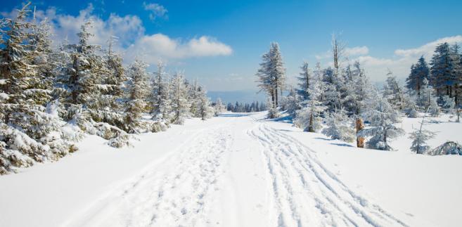 Narty 2020: 7 miejsc na zimowy wypoczynek w Polsce