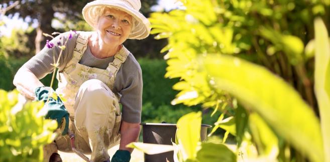 Rząd pracuje nad aktywizacją osób starszych