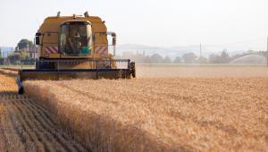 Prezes Agencji Restrukturyzacji i Modernizacji Rolnictwa - odwołany