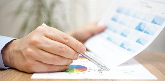 biznes, firma, analiza, analityk, doradca