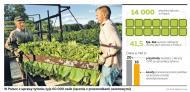 Zakaz stosowania dodatków do papierosów to utrata miejsc pracy dla polskich rolników