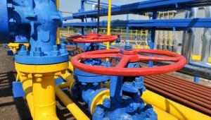 Obecnie zużycie gazu w Polsce wynosi prawie 18 mld m sześc. rocznie, co daje nam siódmą pozycję pod względem wykorzystania tego paliwa w UE.