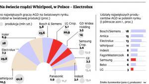 Na świecie rządzi Whirlool, w Polsce – Electrolux