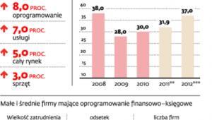 Polski rynek IT powoli rośnie