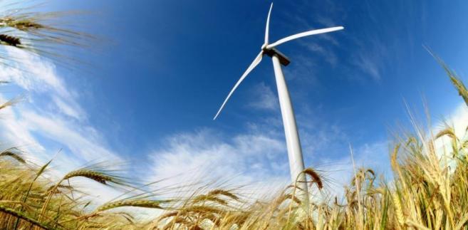 Na łamach DGP eksperci zastanawiali się, czy to efekt zwykłego błędu, czy może nieetycznego lobbingu branży wiatrakowej.